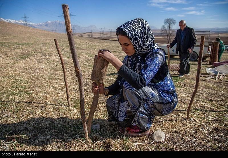 سوسن؛ کک باکسنگ کی حکمران ایران کی خانہ بدوش لڑکی
