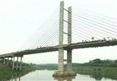 پریدن همزمان 245 نفر از یک پل برای شکستن رکورد+فیلم و عکس