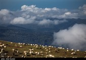 Iran's Mazichal Village: Paradise of Nature Lovers