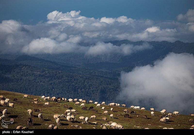 Iran's Mazichal Village: Paradise of Nature Lovers