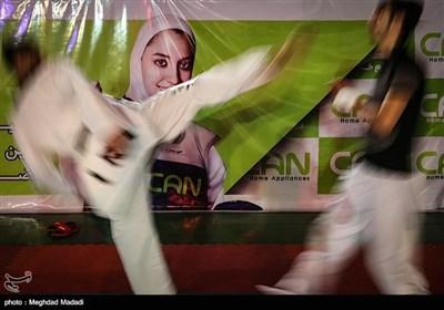 ایران میں ٹائیکوانڈو کے مقابلے