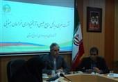 440 هکتار از عرصههای منابع طبیعی خراسان جنوبی برای دامداران آزادسازی شد
