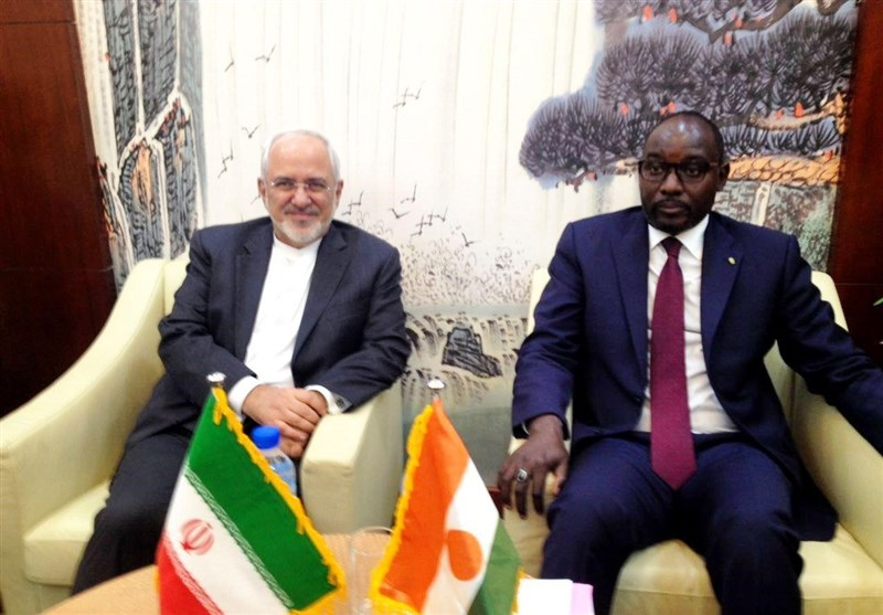 دیدار ظریف و وزیر خارجه نیجر