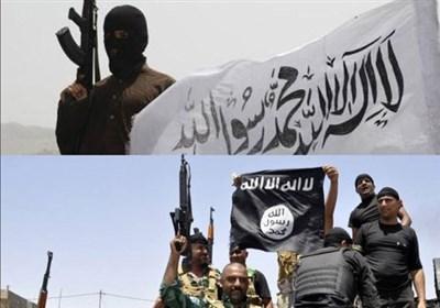 سخنگوی والی «جوزجان»: در درگیری های طالبان و داعش 300 نفر کشته شدند