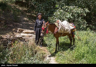 روستای کوهستانی گلین، در فاصله 50 کیلومتری جنوب غربی شهر سنندج در استان کردستان واقع شده است. این روستا بافت پله کانی دارد و اهالی آن بیشتر به کشاورزی و باغداری مشغول هستند و از این طریق امرار معاش میکنند.