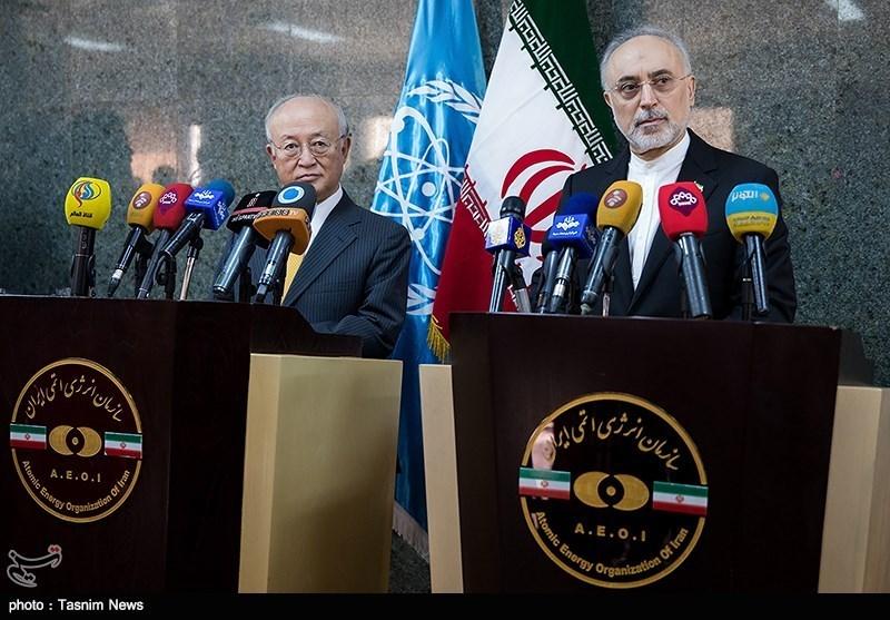IAEA's Chief Amano Meets AEOI Chief Salehi in Tehran