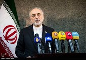 Only IAEA in Charge of Verifying Iran's Compliance with JCPOA: Salehi