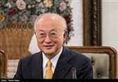 IAEA 'Ready to Verify North Korea's Denuclearization'