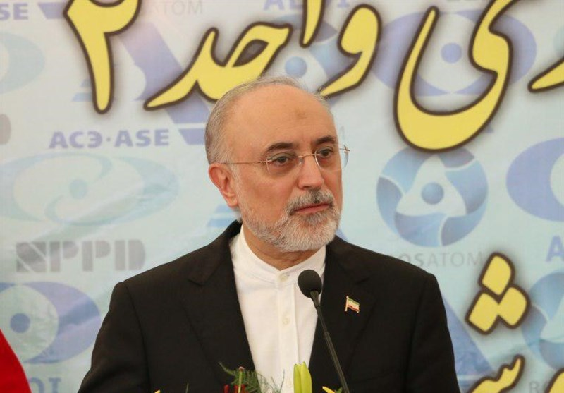 Iran to Unveil Domestically-Made Nuclear Batteries in 2018: Salehi