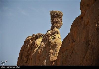 قلعه لک لک- زنجان