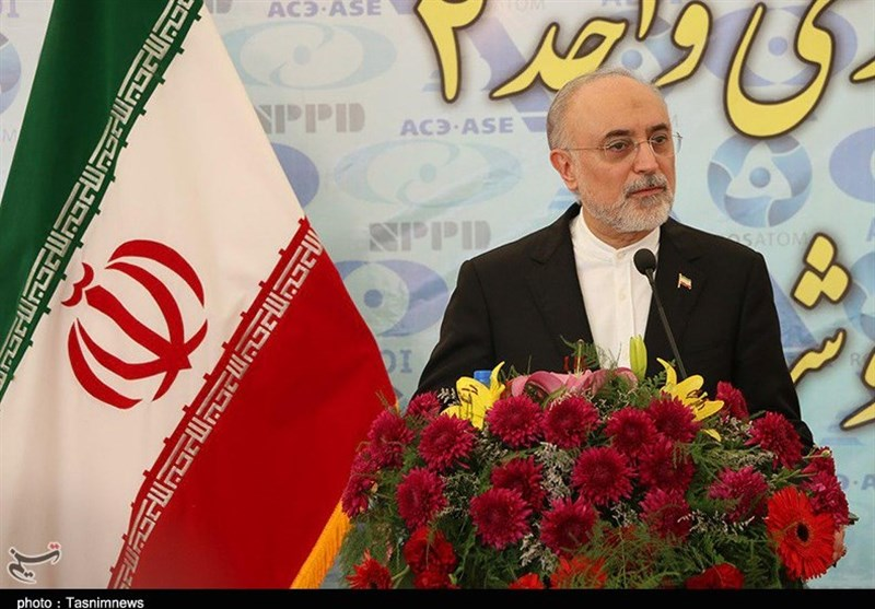 Iran to Launch Subspecialty Nuclear Hospital in Four Years: AEOI Chief