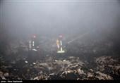 لرستان  آتشسوزی در تالابهای پلدختر مهار شد