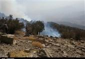 آتش سوزی جنگلهای کوه سفید لنده