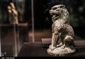شیرهای ایرانی 1500 سال قبل از کره سر درآوردند