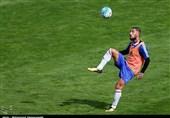 Ashkan Dejagah Plays Down Move to Qatar Stars League