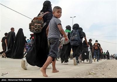 مشارکة الاطفال فی مسیرة أربعین الإمام الحسین (ع)