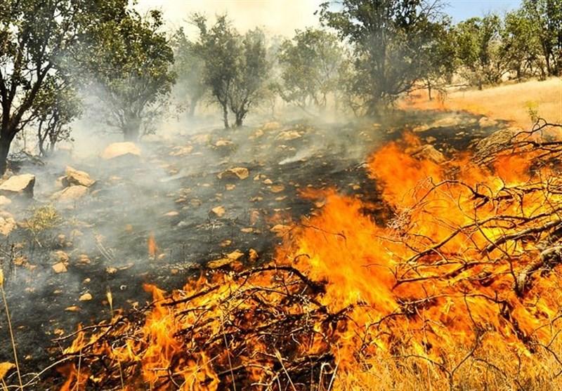 خوزستان| حریق در نیزارهای نوار مرزی اروند به صورت کامل اطفا شد