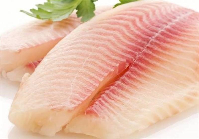 هل تعتقدون أن السمک الطازج أکثر فائدة من المجلّد؟