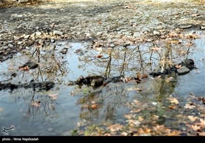 پاییز در مشهد