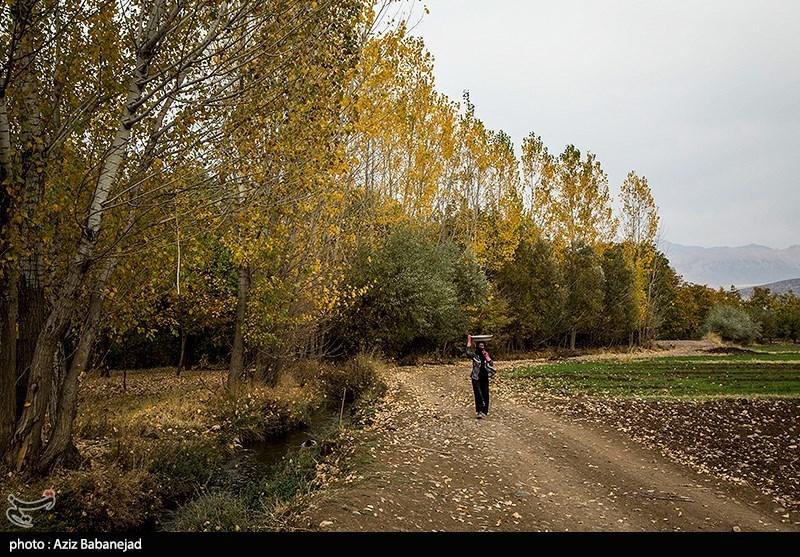 فصل الخریف فی مدینة ''الشتر'' بمحافظة لرستان
