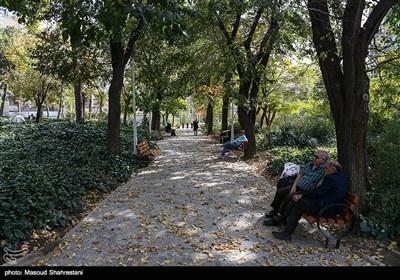 پارک شفق در قسمت مرکزی محله یوسف آباد