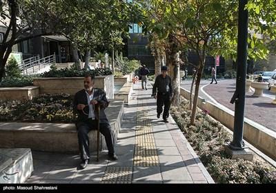 شهرداری منطقه 6 در میدان اسدآبای