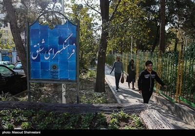 پارک و فرهنگسرای شفق در قسمت مرکزی محله یوسف آباد