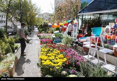 گلخانه گل های طبیعی واقع در خیابان شهید جهان آرا