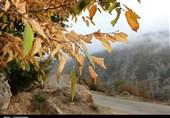 پاییز اشکورات