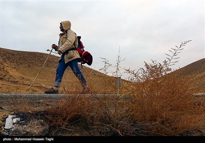 پیاده روی زائران حرم رضوی - مشهد