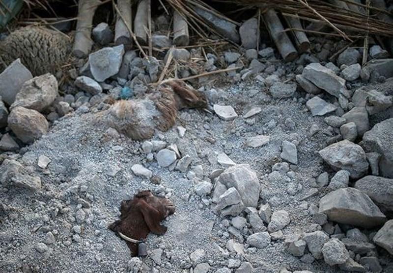 تخصیص کامل اعتبارات ملی به مناطق زلزلهزده استان کرمانشاه