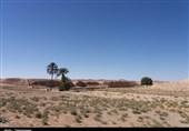 خشکسالی در هفتگل