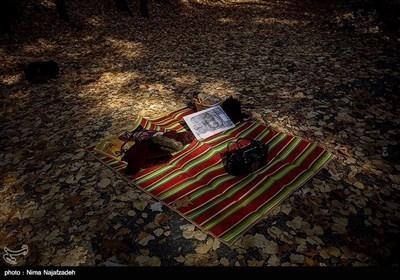 مشہد مقدس میں موسم خزاں کے مناظر