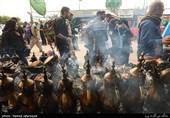 عضو مجلس اعلای عراق در دزفول: مردم عراق آماده پذیرایی از زائران ایرانی اربعین هستند