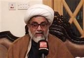 پاکستان میں شیعہ سنی عوام دہشت گردی، انتہاء پسندی اور کرپشن کے خلاف متحد ہیں، علامہ راجہ ناصر