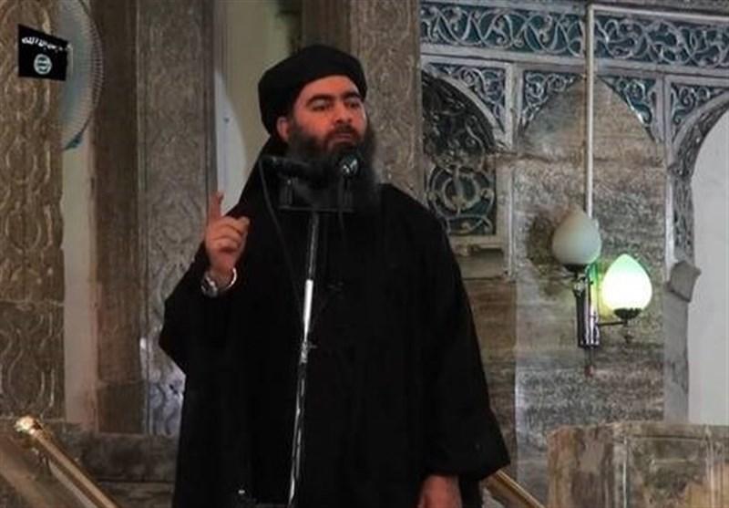 یک منبع عراقی: اعلام مرگ مغزی ابوبکر البغدادی؛ التونسی سرکرده جدید داعش شد