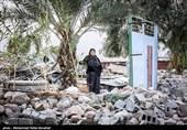 فعالیت روزانه گروههای جهادی برای اسکان موقت زلزله زدهها