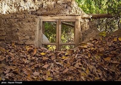 کردستان میں موسم خزاں کی تصویری جھلکیاں