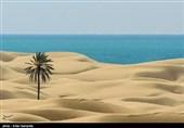 ساحل دَرَک زرآباد سیستان وبلوچستان