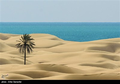 Iran's Beauties in Photos: Darak Beach