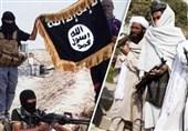 هشدار اتحادیه آفریقا درباره بازگشت 6 هزار تروریست داعشی