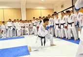 مهدیزاده: برگزاری سمینار در مهد کاراته دنیا برای من مانند قهرمانی جهان بود