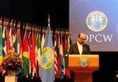 دهقانی: برخی کشورها در کاربرد سلاحهای شیمیایی توسط گروههای تروریستی مقصرند
