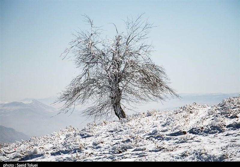 آغاز بارش برف پاییزی گسترده از روز سه شنبه در آذربایجان غربی