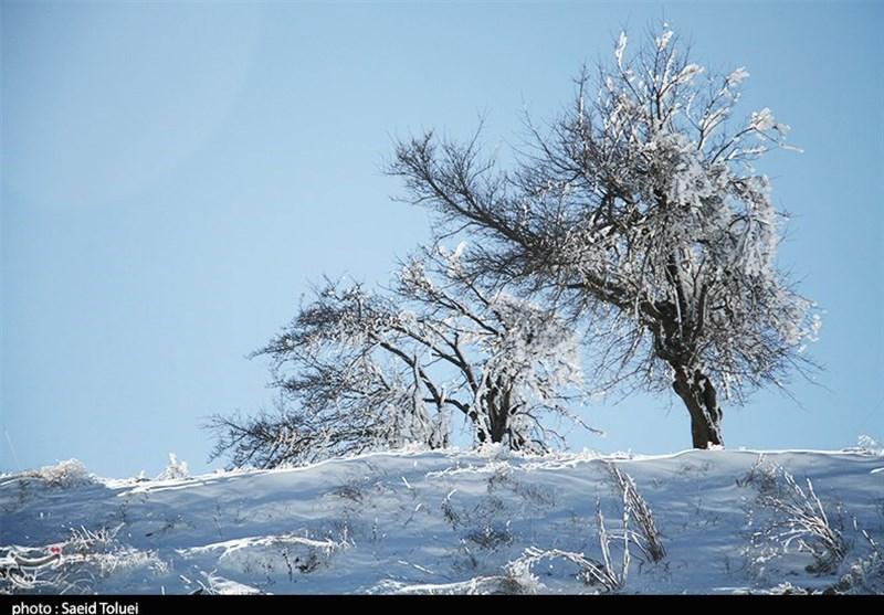 بارش برف ارتفاعات خراسان شمالی را سفیدپوش کرد + تصاویر