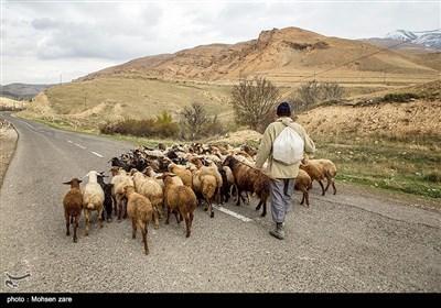ایران؛ اسالم سے خلخال تک ۔۔۔