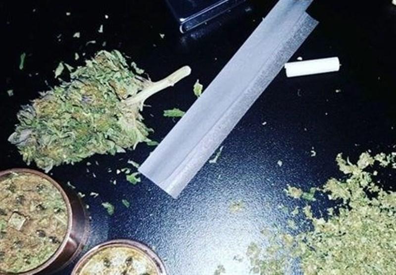"""توقف رشد مصرف مادهمخدر """"گل"""" /کمک جهانی برای مبارزه با مواد مخدر """"تقریبا هیچ"""""""