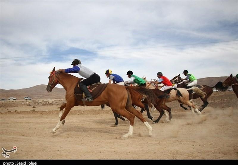 هرمزگان پانزدهمین دوره مسابقات قهرمانی اسبدوانی برگزار شد