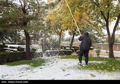 بارش نخستین برف پاییزی در ارومیه