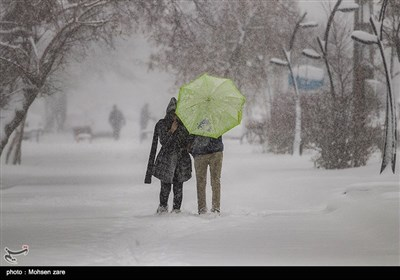بارش اولین برف پاییزی-اردبیل